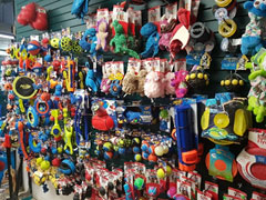 Leashes, collars, and harnesses